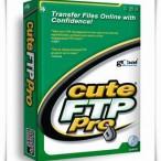 CuteFtp'de siteleri direk kopyalamak